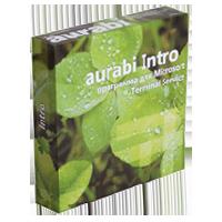 Скачать программу Aurabi Intro 1.9 бесплатно